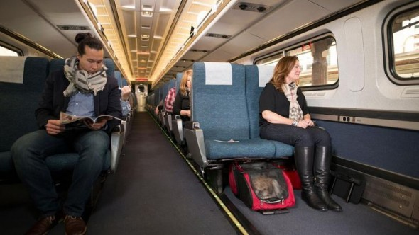 Amtrak to Allow Small Pets as Travel Companions