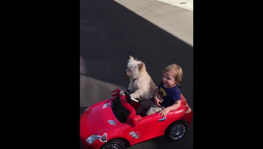 Driving Master Oliver