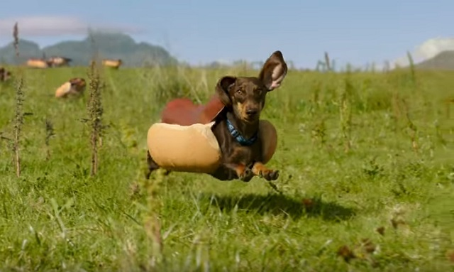 Hot Dog Overload! Check Out This Hilarious New Ad Being Featured The Super Bowl