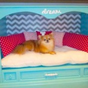 Turn An Outdated Console TV Into A Fabulous Princess Bed For Your Dog