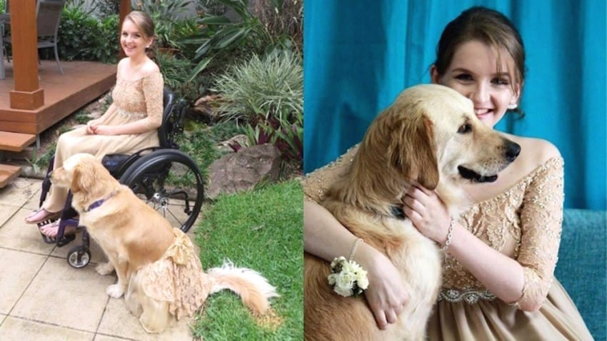 Student And Her Service Dog Attend Prom In Beautiful Matching Dresses