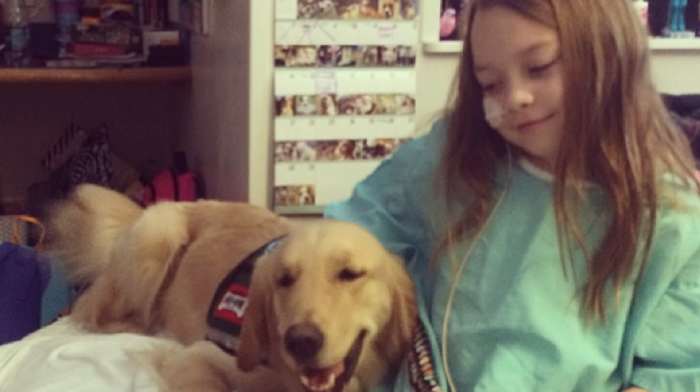 Children's Hospital Staffs 2 Dogs To Provide Love And Support To Young Patients