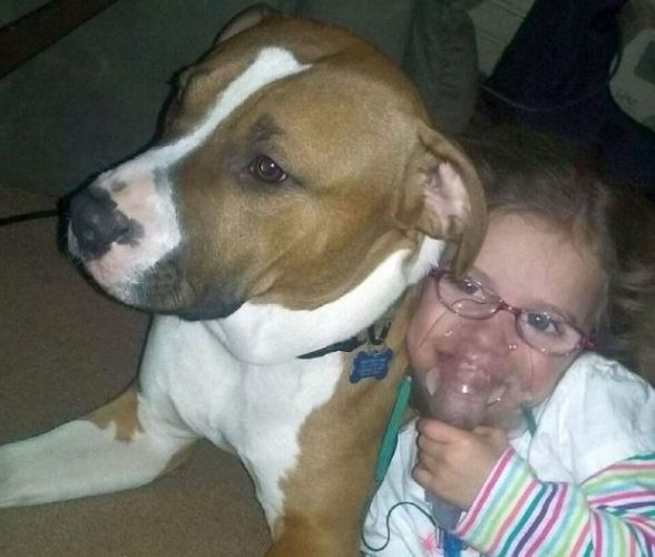 Ohio Officials Say Scrappy Can Stay With Sick Child