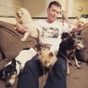This Amazing Man Has Dedicated His Life In Adopting Senior Dogs