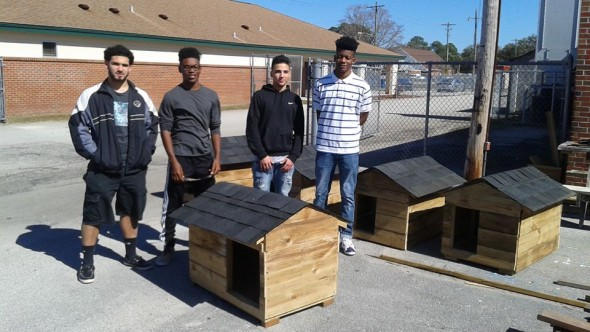 Teenagers Find Ways to Help Animals in Need
