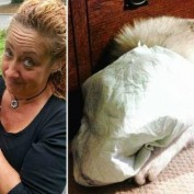 Horrid Woman Who Taped Puppy's Piddle Pad to His Face Being Investigated