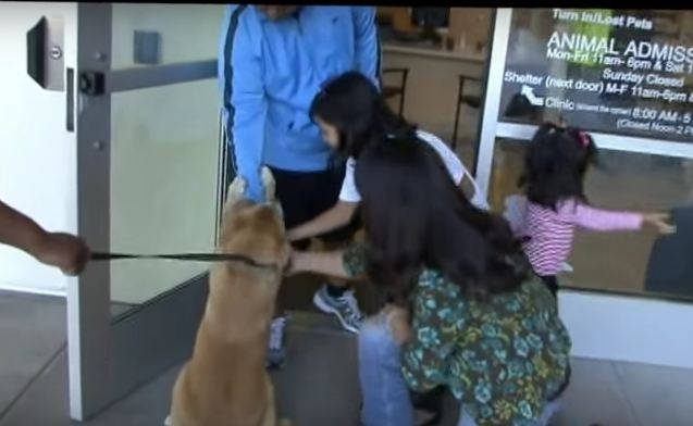 Foxy is Reunited With Her Family After Two Years