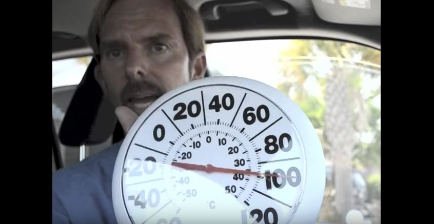 EVERYONE Needs To See What Happens To Our Pets When They Sit in A Hot Car For 30 Minutes…