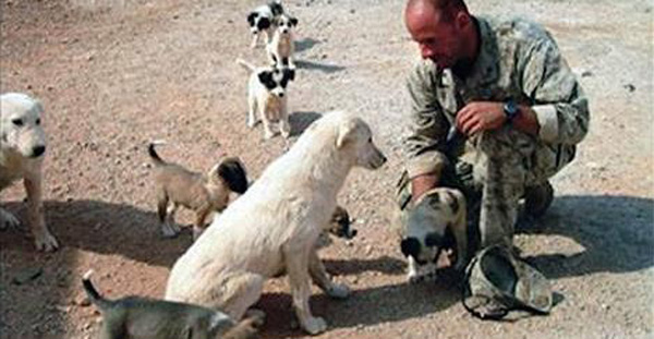 Marine Says Goodbye To A Stray Dog. 2 Days Later, He Never Expects THIS!
