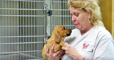 She gave up everything to rescue this poor baby, then she looks into his eyes and realizes this…
