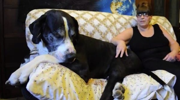 Mom Adopts A 'Normal' Puppy, But When Her Husband Sees The Truth? He's FLOORED!