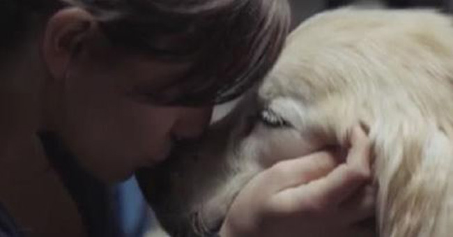 If Your Dog Is Your Best Friend, This Video Will Hit Close To Home