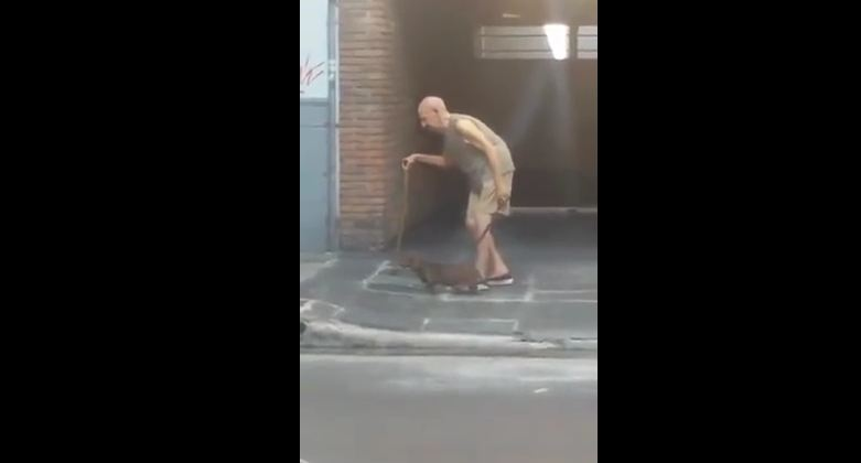 Patient Dog Walks Slowly So His Elderly Human Can Keep Up With Him
