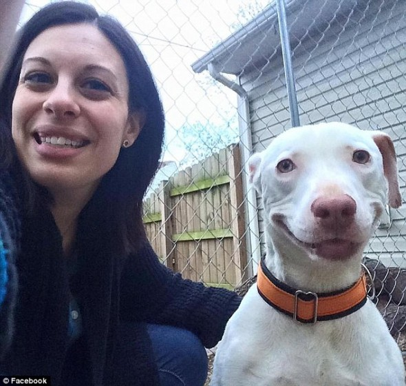Abandoned Dog Hasn't Stopped Smiling Since He Was Rescued