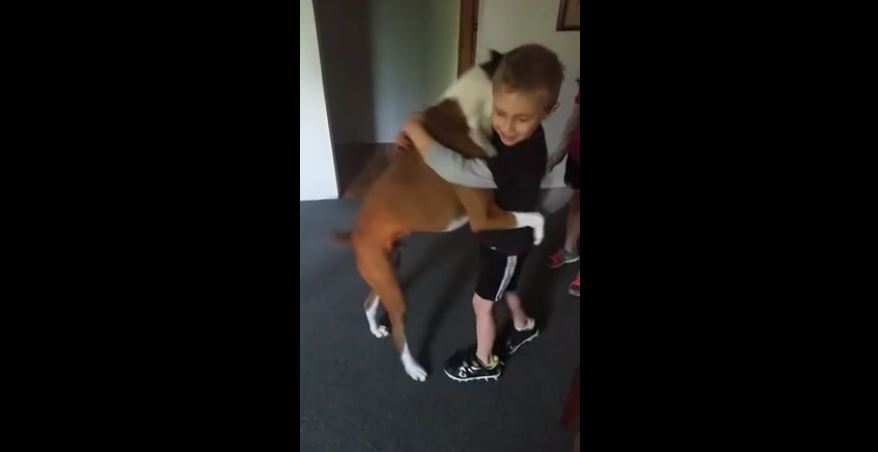 Dog learns to give hugs on command
