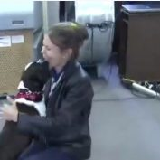 She Was Devastated When Her Dog Disappeared 2 Years Ago — But He Was Finally Found!