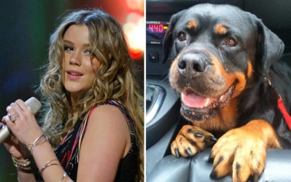 Joss Stone Postpones Tour, Rushes Home to Comfort Sick Dog