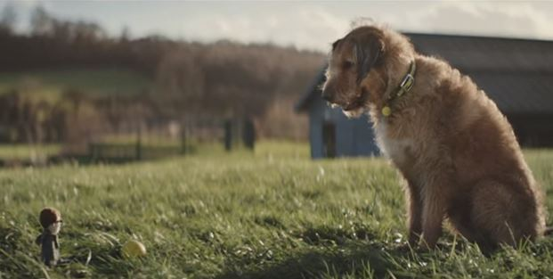 This Inspiring Commercial Of A Dog Waiting For His Human Will Have You In Tears