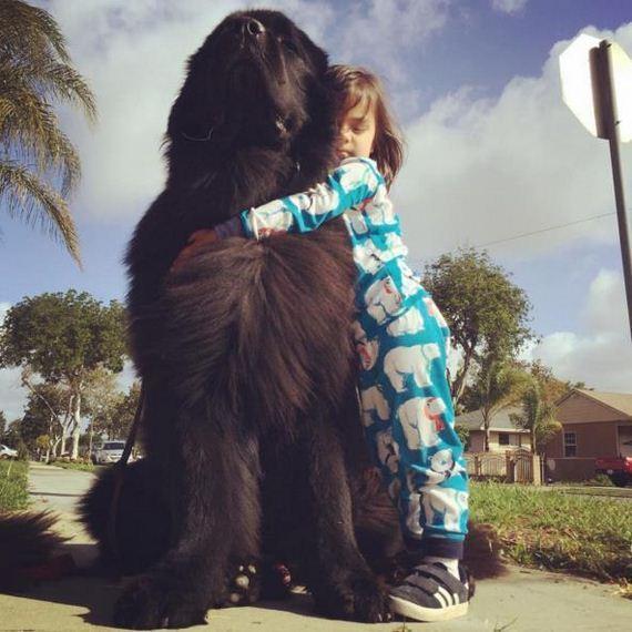 04-Big-Dog