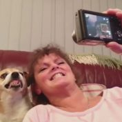 Dog Smiles Really Big for a Selfie