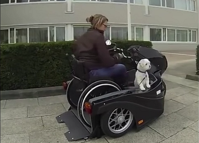 Watch This Woman Cruise In Her Wheelchair-Accessible Motorcycle With Her Dog!