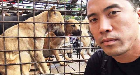 One Man's Fight to Save Dogs from Torture and Death in Asia