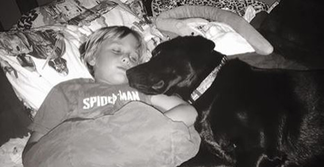 Jedi the Dog Senses Low Blood Glucose, Saves 7-Year-Old Master Luke