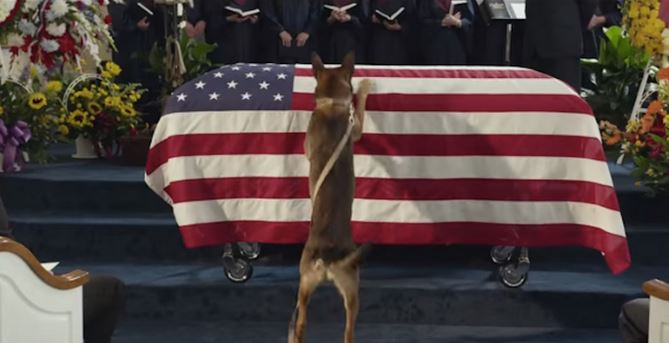 See what the dog does after the marine dies in battle and you will be speechless