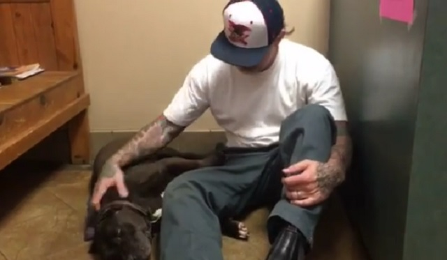 Man Tearfully Saying Goodbye To His Dog Shows Us How Hard It Is To Part With Our Furry Best Friends…