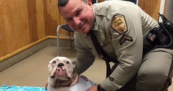 Police Officer used his bare hands to stop a puppy from bleeding to death