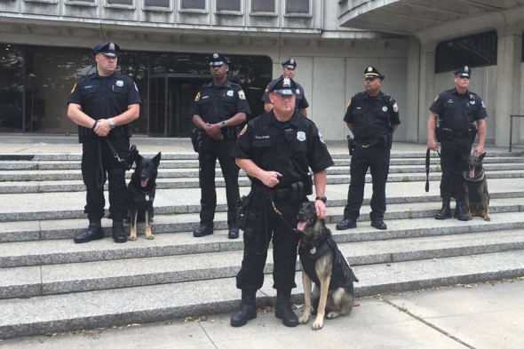 Woman Donates $22K for Bulletproof Vests for Philadelphia K9's