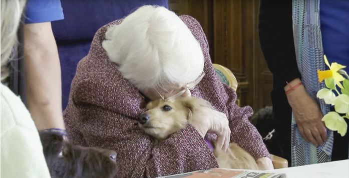 She Hadn't Spoken Or Eaten For 3 Days… But When They Put A Dog On Her Bed? UNBELIEVABLE.