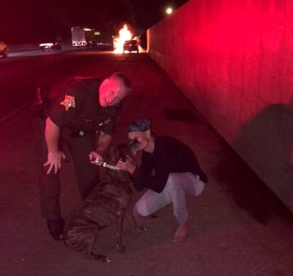 Sheriff's Deputy Risks His Life to Save a Dog Trapped in a Burning Car