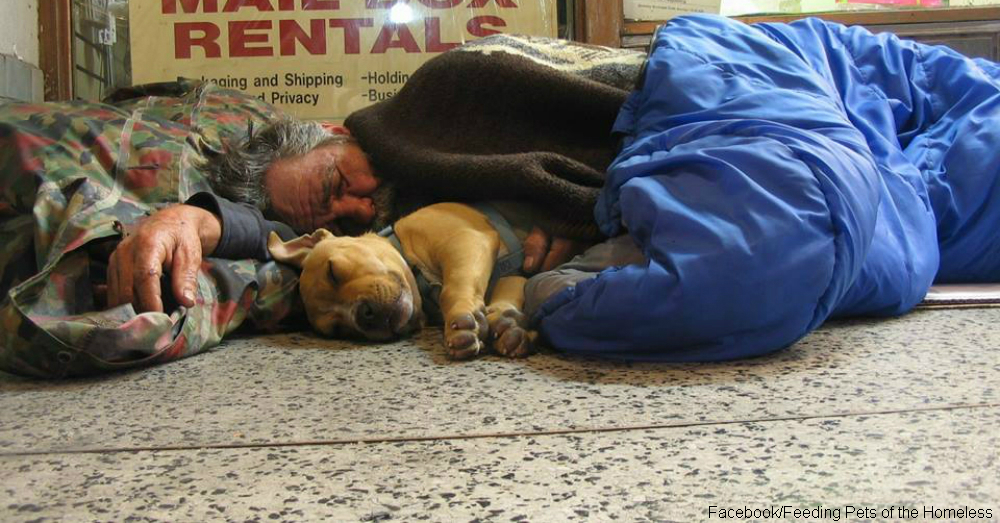 For the Homeless, Man's Best Friend Is Sometimes Man's Only Friend