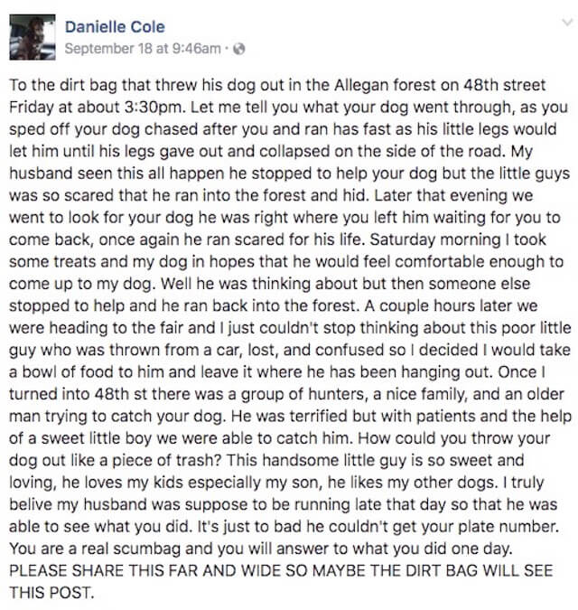 abandoned-dog-facebook7