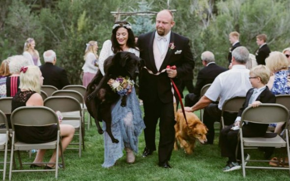 Maid of Honor Carries Bride's Dying Dog Down the Aisle