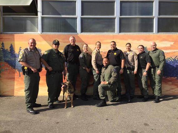 01-deputies-find-dog-skylight