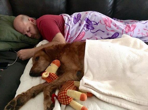 Sick doggo's final ride turns out to be just what he needed
