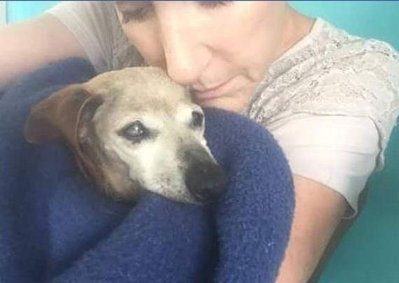 04-blind-dog-shelter-hug