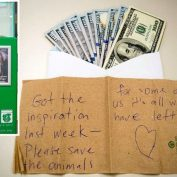Mystery Benefactor Leaves $8,000 in Animal Shelter's Donation Box