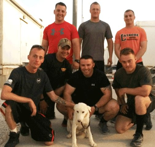 U.S. Soldiers To Adopt Rescued Dogs From the Middle East