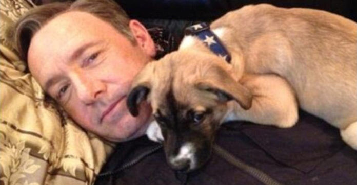 Kevin Spacey Shares This Adorable Story About How He Met His New Dog