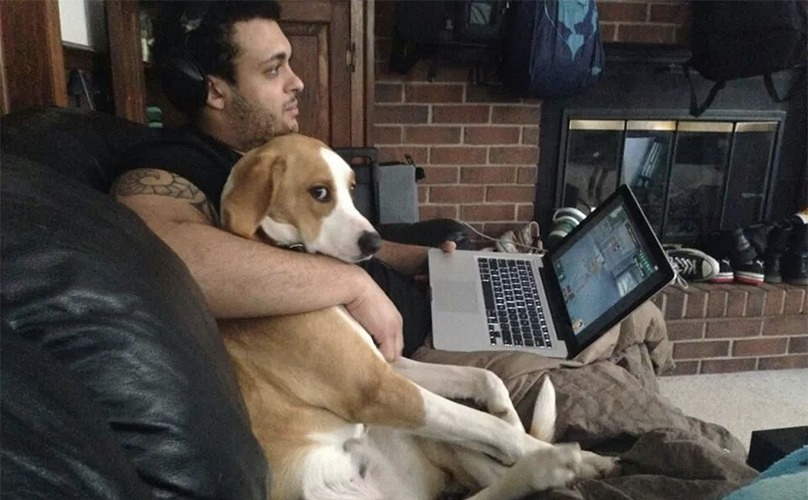 Dogs Who Are A Little Too Comfortable Being The Side Piece