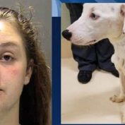 Woman Adopts Dog From A Shelter Then Forgets To Feed Because She's 'Busy'