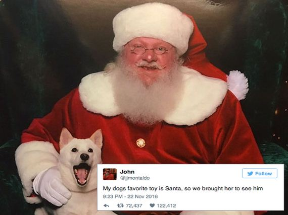 Doggo meeting Santa has the best reaction ever