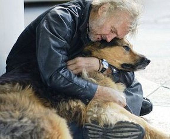 01-pets-homeless
