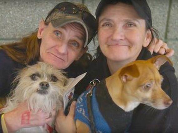 03-pets-homeless