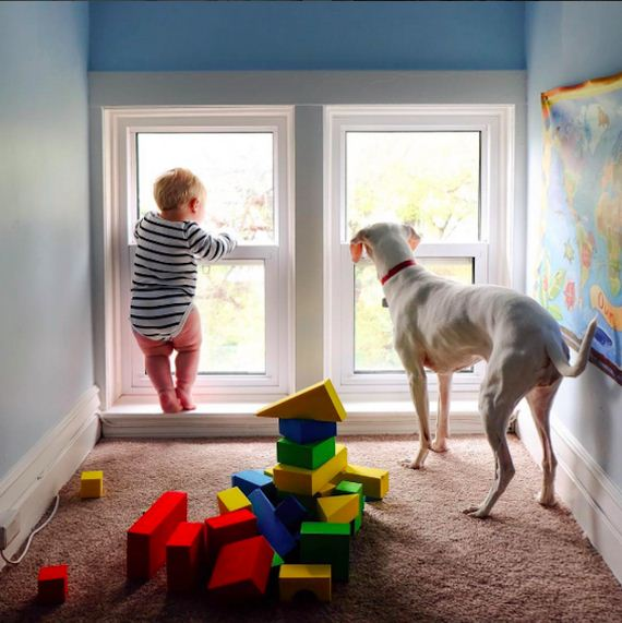 04-tiny-human-dogs