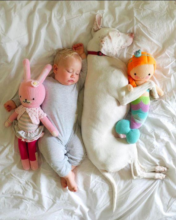 05-tiny-human-dogs