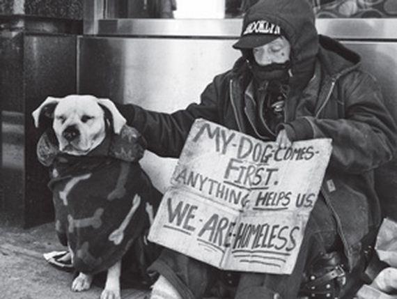 07-pets-homeless